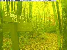Laural Ridge State Park