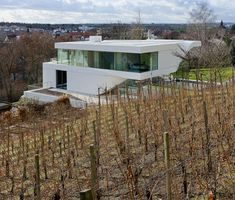 HAUS AM WEINBERG • 2012 • by UNStudio: http://www.unstudio.com • The stepped terraces of an adjacent hillside vineyard inspired the inclining profile of this house.