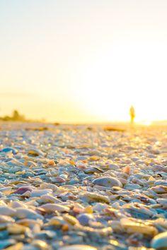 Visiting Sanibel Island Florida - Why to Pick Sanibel for a Beach Getaway! ⋆ Sweet C's Designs
