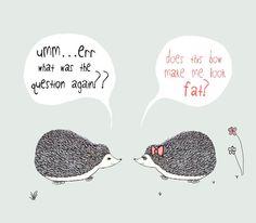 Hedgehogs Illustration