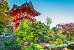 Japanese Garden by John Bailey