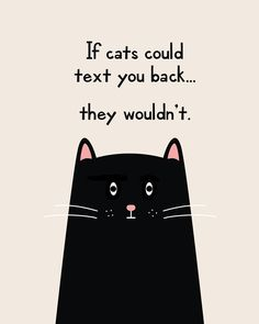 If Cats Could Text You Back They Wouldnt Funny Printable Quote Print Canvas - The post If Cats Could Text You Back They Wouldnt Funny Printable Quote Print Canvas appeared first on Gag Dad. I Love Cats, Cute Cats, Funny Cats, Funny Animals, Cats Humor, Funny Horses, Adorable Kittens, Crazy Cat Lady, Crazy Cats