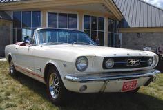 1966 T-5 Mustang