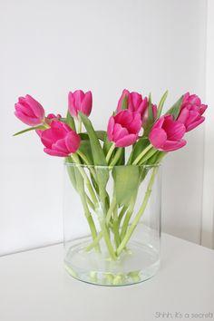 Pink Tulips - Shhh, it's a secret!
