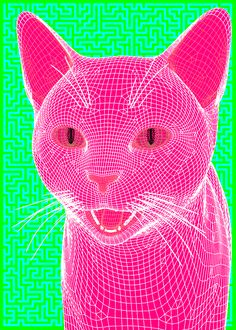 Cool Pink Cat Gif