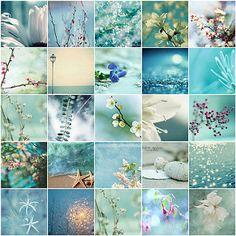 Lovely | These gorgeous photos are the property of the photo… | Flickr Color Collage, Beautiful Collage, Colour Board, Colour Schemes, Happy Planner, Shades Of Blue, Color Inspiration, Inspiration Boards, Planner Stickers