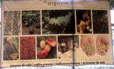 Hey, Gringo ... il est bon ton café !