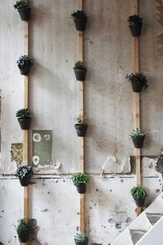 indoor vertical garden / Geef cafe