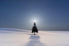 「太陽の冠」 北海道美瑛町