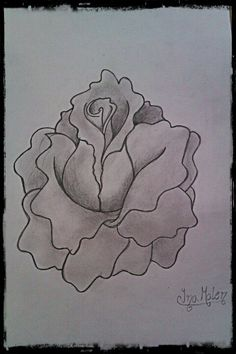 A fantasy rose drawing. by me