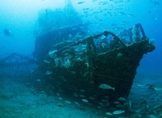 16. The Yongala Shipwreck. Australia | 20 Underwater Wonders of Our Blue Planet | EarthTripper| Page 1