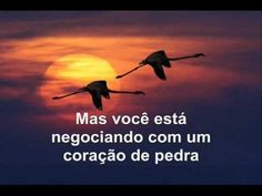 Bee Gees - Wish You Were Here (Tradução) - YouTube