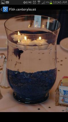 Beta fish center pieces...for Fisher??? Idk.