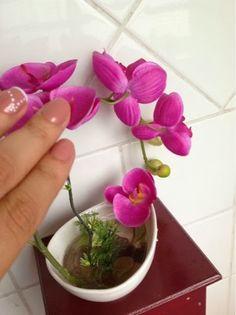 Dividindo Experiências: Esmalte e Plantas da @Elisa Becker Nogueira http://www.dividindoexperiencias.com/2013/09/esmalte-e-plantas.html