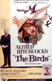 مشاهدة وتحميل فيلم The Birds 1963 مترجم اون لاين