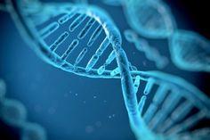 #Así lo dicta el ADN: Las diez cosas que se heredan - Informe21.com: Informe21.com Así lo dicta el ADN: Las diez cosas que se heredan…
