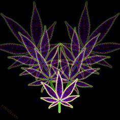 My Cannabis Leaf Art