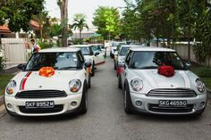 rainbow wedding transport - Google Search