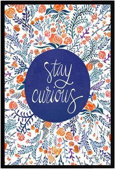 Americanflat Stay Curious Red Navy by Cat Coquillette (Framed Canvas)