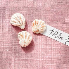 Kitten Paws - America's Most Popular Seashells - Coastal Living