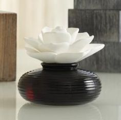 Gorgeous way to fragrance your home! The flower is a reed diffuser that soaks up scented oil!