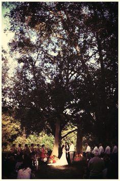 #morganviewfarm #farm #farmwedding #barn #barnwedding #outdoorwedding #weddingvenue #outdoorvenue #beautiful #beautifulwedding #weddingdecor #wedding #decor #bride #groom #vintage #vintagewedding #weddinginspiration #weddingphotography