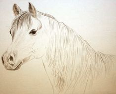 how to paint horses, watercolour horse lesson, free art demo