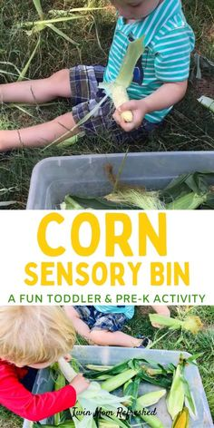 A fun sensory bin for toddlers using corn on the cob! This activity is good for 1 year olds, 2 year olds, and 3 year olds to practice fine motor skills and life skills! Activities For 1 Year Olds, Crafts For 2 Year Olds, Pre K Activities, Motor Skills Activities, Toddler Learning Activities, Children Activities, Fine Motor Skills, Daycare Lesson Plans, Language School