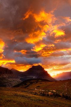 Morning Blaze- Logan Pass, Montana