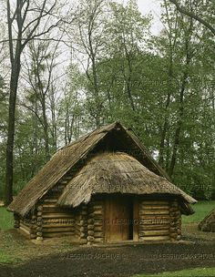 HALLSTATT CULTURE ARCHITECTURE 2ND-1ST MILL.BCE Straw-thatched Hallstatt log-cabin from Roggenbrunn, Austria. Reconstruction. Hallstatt Period (Early Iron, 8th-4th BCE) Size: 670 x 510 cm, floor 90 cm below exterior ground level Museum fuer Vorgeschichte, Asparn/Zaya, Austria