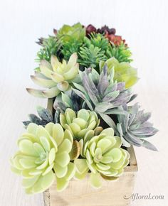 Succulent Wedding Ce