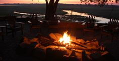 Parks, Safari, River Lodge, Outdoor Decor, Types Of Animals, Wilderness, Tourism, National Forest, Places