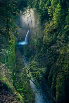 Fairy Metlako Falls Photo by clifford paguio -- National Geographic Your Shot
