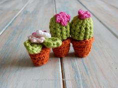 Mini Cactus and Flower Pot
