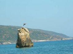 Greece volos pelio