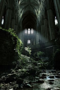 Abandoned cathedral. Nature takes it back. nature, dream, magical places, abandoned churches, castles, abandon church, beauti, ruins, france