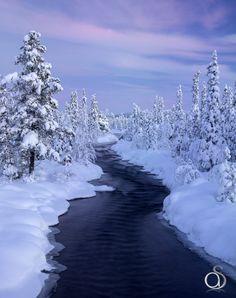 Frozen Wonderland by Antony Spencer