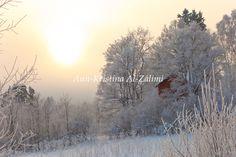 Ann-Kristina Al-Zalimi, sunny frosty day, winter, snow, skandinavia, aurinkoinen pakkaspäivä, pakkanen, lumi, is, vinter, snö, snowy, frosty, snowy landscape