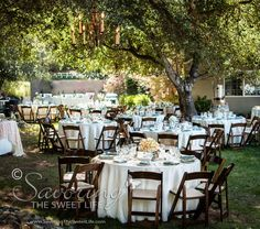 Savoring The Sweet Life Photography The Wedding Reception: The Wedding of Sheri & Barry at Willow Creek Events Valley Center, San Diego Wedding Photographer