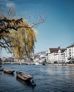 Zürich Tourism (@visitzurich) • Limmat river on a sunny day Sunny Days, Tourism, New Homes, Boat, River, Instagram, Switzerland, Green, Inspiration