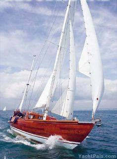 Classic bloodhound yacht blue ocean sail away Classic Sailing, Classic Yachts, Catamaran, Wooden Sailboat, Love Boat, Wood Boats, Yacht Boat, Sail Away, Tall Ships