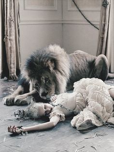 narnia garden party 1994/alice hangs out with aslan partied out after a night of dancing....Atlas The Lion and Edie Campbell by Tim Walker | Love #10