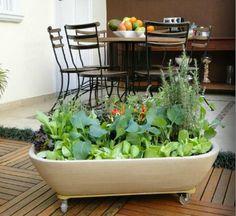 Horta Zen - Sua Garantia de Alimentação Saudável