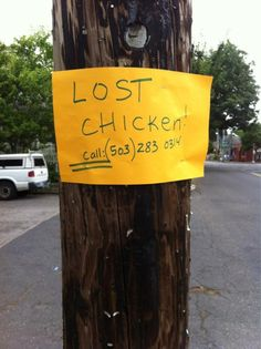 Portland,OR. Needs a picture of the lost chicken, lots of different varieties. Moving To Portland, Portland Oregon, Oregon City, Best Cities, Pacific Northwest, North West, The Neighbourhood, Washington, Weird