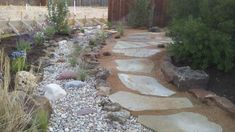 Dry creek bed with native plantings. Set to the right of the creek bed is Oklahoma flagstone set in decomposed granite which gives access to the secret garden in the back. All water runs to the dry creek bed and we have maximized water saturation on the property. (go to landscape lifecycles to see the growth in two years.)