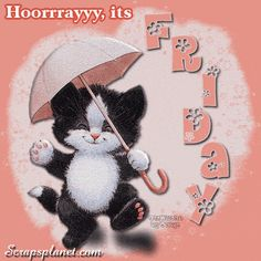 Good Night Quotes : QUOTATION – Image : Quotes Of the day – Description Friday! days friday gif happy friday days of the week weekdays friday greeting Sharing is Caring – Don't forget to share this quote ! Happy Friday Gif, Hello Friday, Happy Day, Friday Cat, Blessed Friday, Cute Good Night, Good Morning Good Night, Morning Wish, Friday Dance