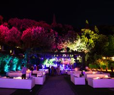 Surrounding trees take on various lighting of red, purple and blue hues for a dramatic effect for your event.