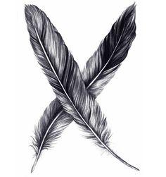 Feathers are symbols of Spirit.