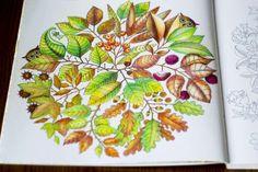Secret garden, coloring book, Johanna Basford