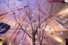 Ribbon & Paper Hanging Escort Cards on Tree in Wedding Reception Tent // Planning: @avleventco // Photo: @visiophoto  // Read More: http://ashevilleeventco.com/blog/brooke-and-keiths-biltmore-wedding/ // #escortcards #escortcardinspiration